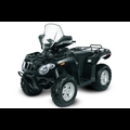 ARCTIC CAT 366