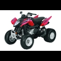 ARCTIC CAT DVX250