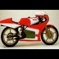 CAN-AM/ BRP 250 Road Racer